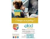 Eliad - Des postes encore à pourvoir cet été !